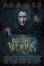 Into the Woods – În inima pădurii (2014)