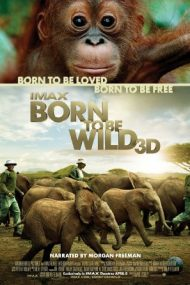 Born to Be Wild – Născuți pentru a fi liberi (2011)