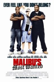 Malibu's Most Wanted – Cel mai cautat din Malibu (2003)