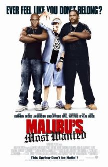 Malibu's Most Wanted – Cel mai cautat din Malibu (2003)