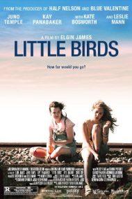 Little Birds – Când prinzi aripi (2011)