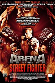 Arena of the Street Fighter (2013)