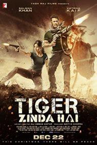 Tiger Zinda Hai – Tigrul: Misiune de salvare (2017)