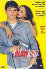 Blow Dry – Idile de salon (2001)
