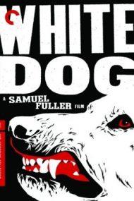 White Dog – Câinele alb (1982)