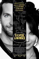 Silver Linings Playbook – Scenariu pentru happy-end (2012)