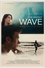 The Perfect Wave (2015)