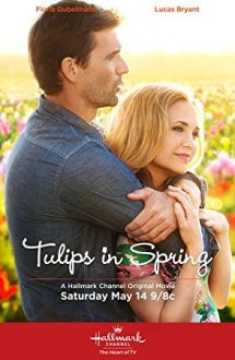 Tulips in Spring – Dragoste şi lalele (2016)