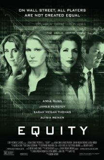 Equity – Capital propriu (2016)