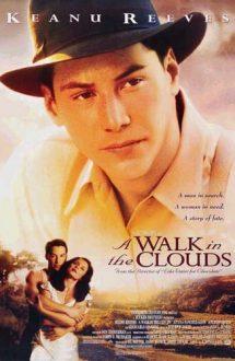 A Walk in the Clouds – Atât de aproape de cer (1995)