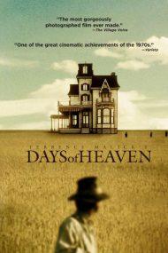Days of Heaven – Zile în paradis (1978)