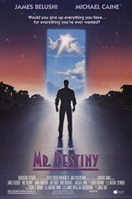 Mr. Destiny – Domnul Destin (1990)