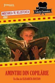 Amintiri din copilărie (1965)