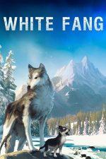 White Fang – Colț Alb (2018)