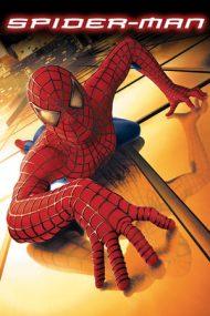 Spider-Man – Omul-Păianjen (2002)