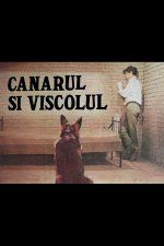 Canarul și viscolul (1969)