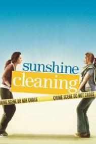 Sunshine Cleaning – Afacere de familie (2008)