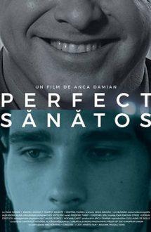 Perfect sănătos (2016)