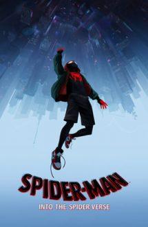 Spider-Man: Into the Spider-Verse – Omul-Păianjen: În lumea păianjenului (2018)