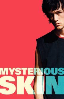 Mysterious Skin – Misterele tinereții (2004)