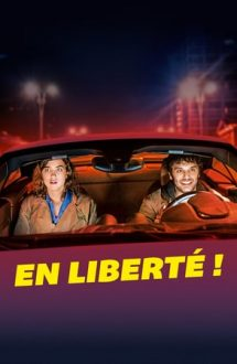 The Trouble with You – În libertate (2018)