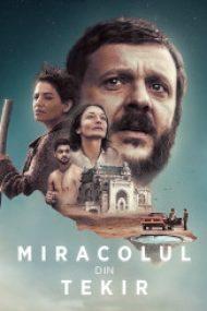 Miracolul din Tekir (2015)