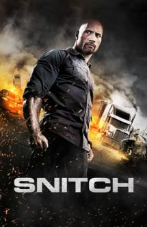 Snitch – Capcana (2013)