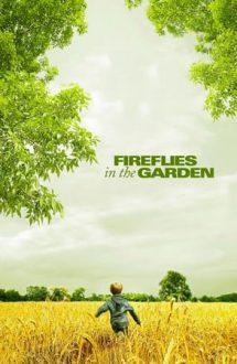 Fireflies in the Garden – Licurici în grădină (2008)