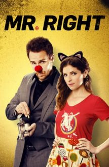Mr. Right – Un iubit… mortal (2015)