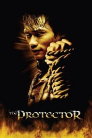 The Protector – Misiune de recuperare (2005)