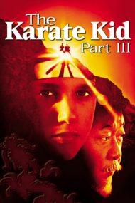 The Karate Kid 3 (1989)
