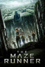 The Maze Runner – Labirintul: Evadarea (2014)