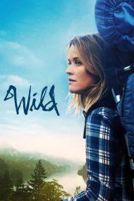 Wild – Sălbăticie (2014)