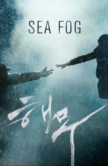 Sea Fog (2014)
