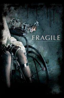 Fragile – Oase fragile (2005)