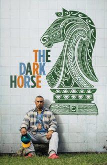 The Dark Horse – Povestea lui Genesis Potini (2014)