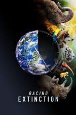 Racing Extinction – Cursa distrugerii (2015)