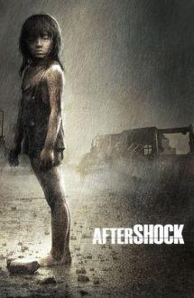 Aftershock – După cutremur (2010)