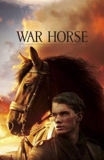 War Horse – Calul de luptă (2011)