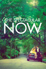 The Spectacular Now – Aici și acum (2013)