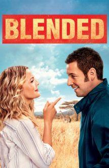 Blended – Din greșeală împreună (2014)