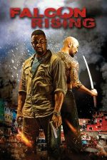 Falcon Rising – Nume de cod: Şoimul (2014)