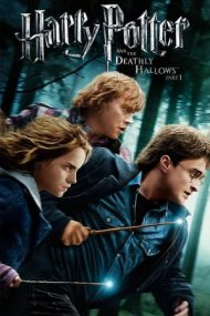 Harry Potter and the Deathly Hallows: Part 1 – Harry Potter și Talismanele Morții: Partea 1 (2010)