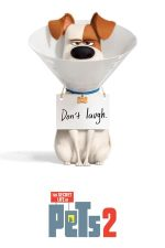 The Secret Life of Pets 2 – Singuri acasă 2 (2019)