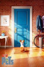 The Secret Life of Pets – Singuri acasă (2016)