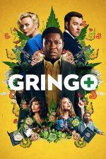 Gringo – Amator în misiune (2018)