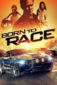 Born to Race – Pilot înnăscut (2011)