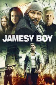 Jamesy Boy (2014)