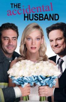 The Accidental Husband – Un soț în plus (2008)