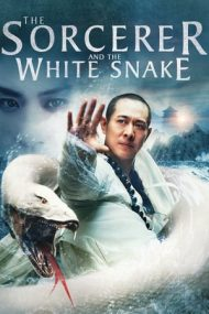 The Sorcerer and the White Snake – Șarpele fermecat (2011)
